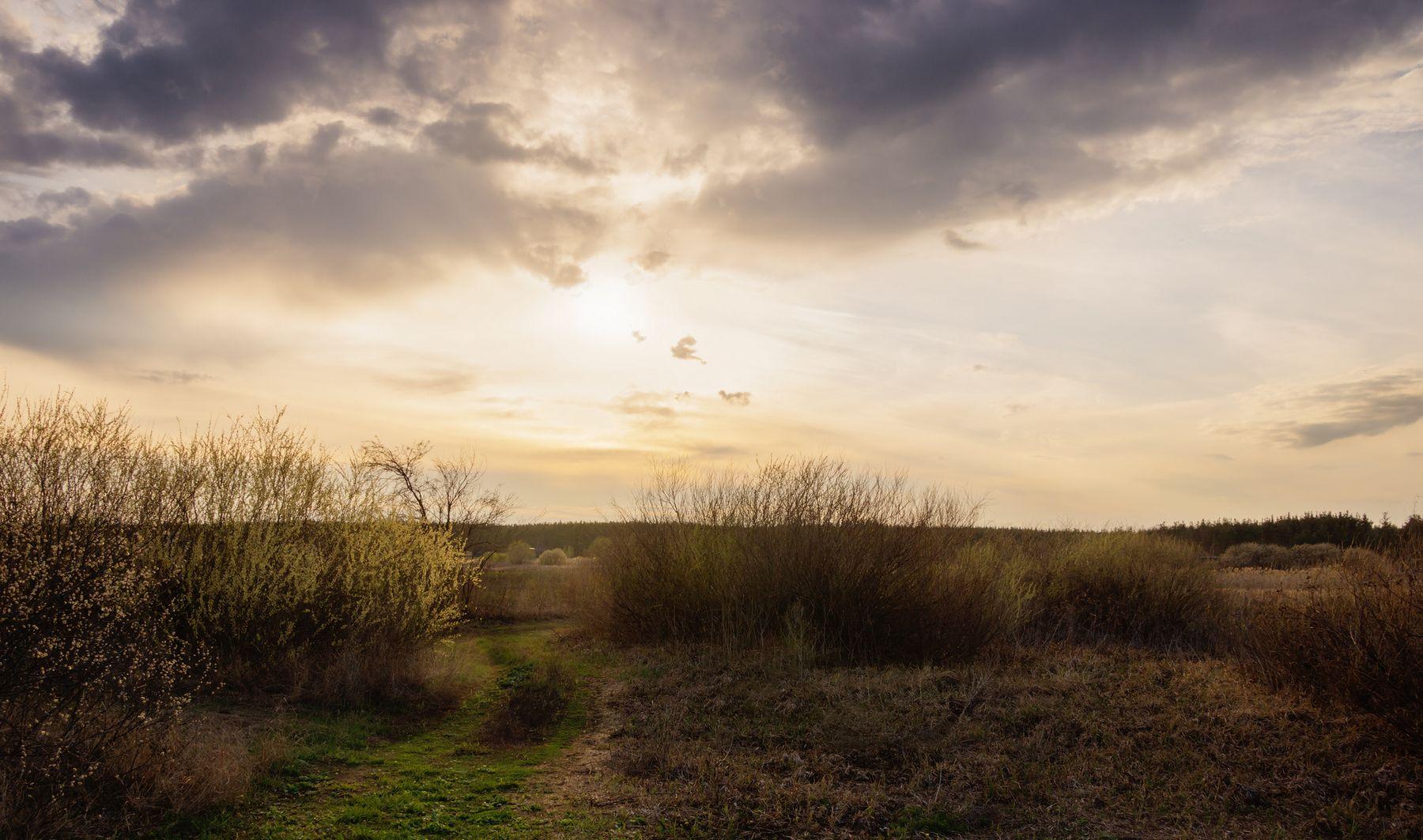 Дорога на закат пейзаж природа весна вечер дорога облака солнце луг река Усманка
