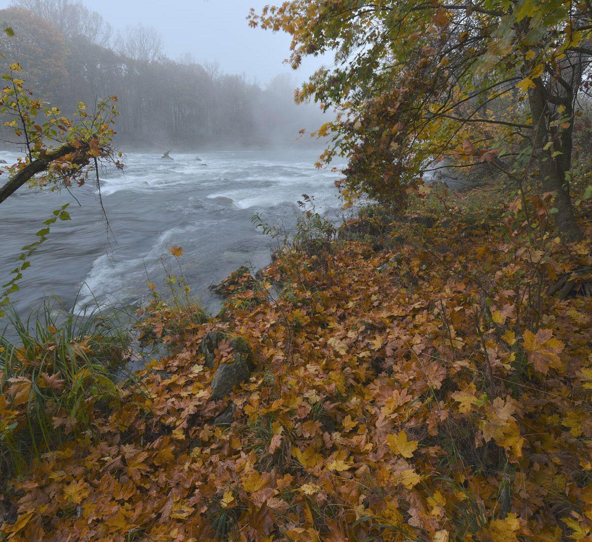 Туманным утром на реке осень река утро туман
