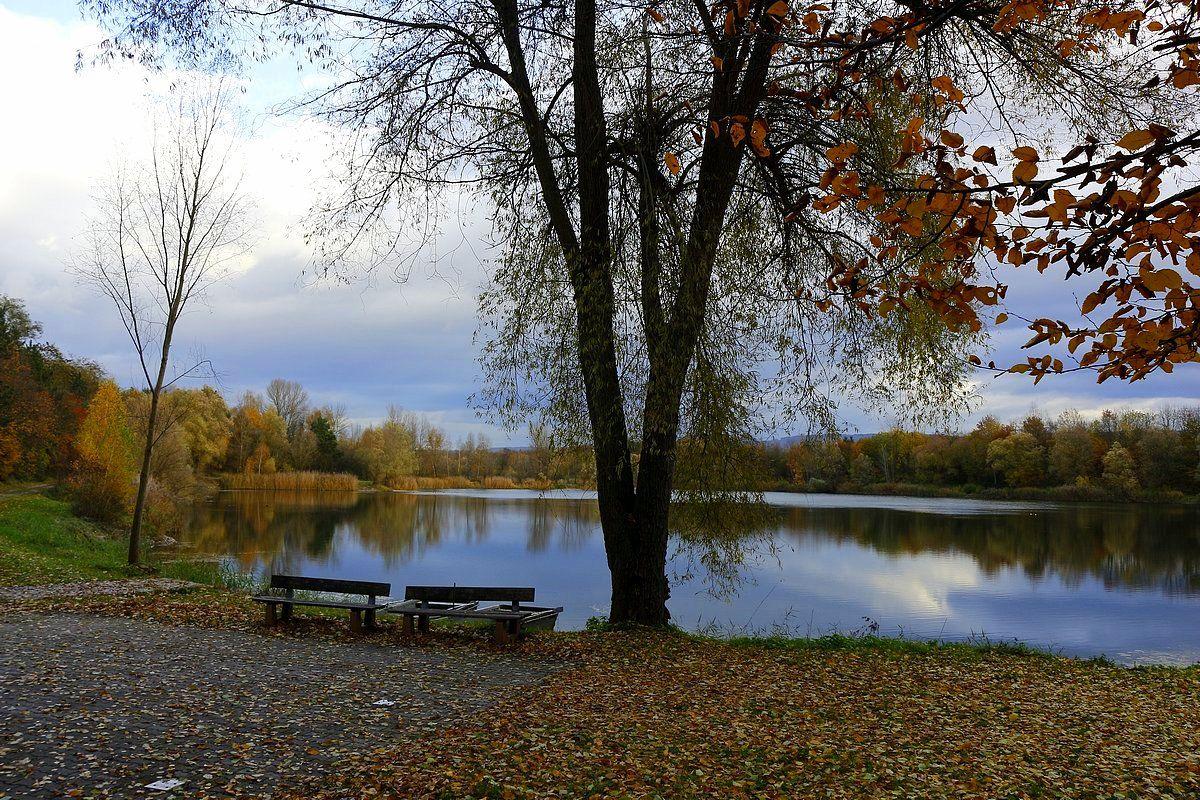У озера Осень озеро скамейки