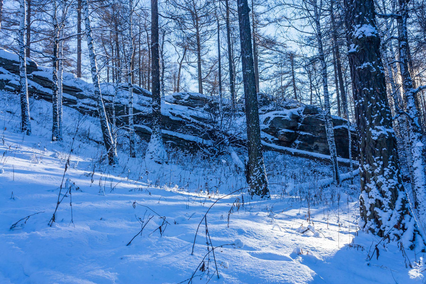 Зимний лес Южный Урал Миасс Ильменский хребет зима