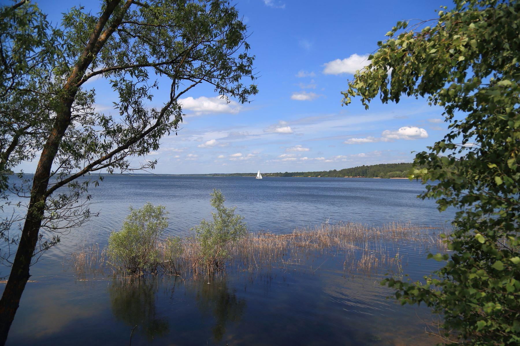 Белеет парус одинокий... парусник озеро лето