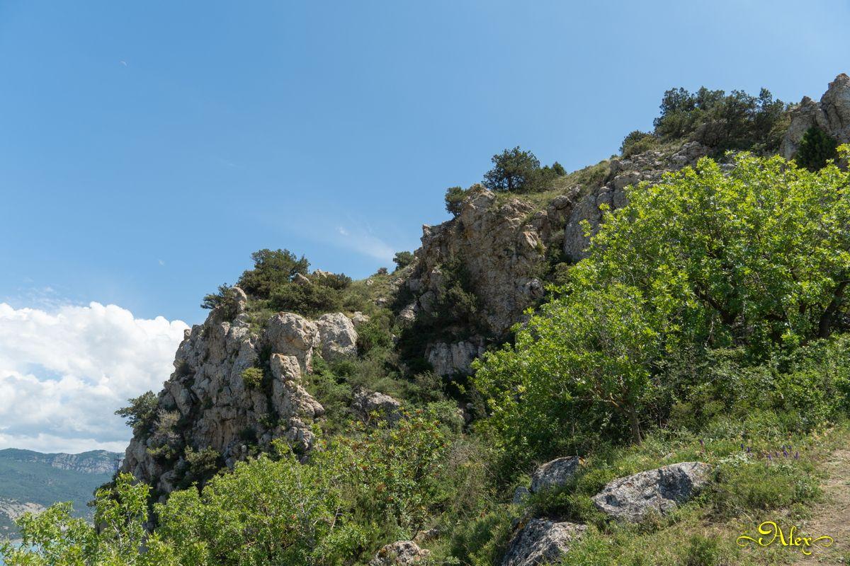 Горы Крыма горы природа Крым лето вершина