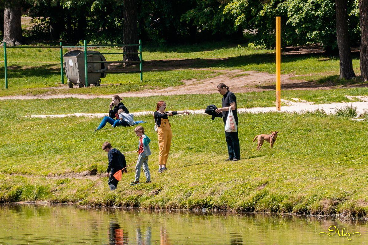 Вот и лето парк Кузьминки Шибаевский пруд лето люди