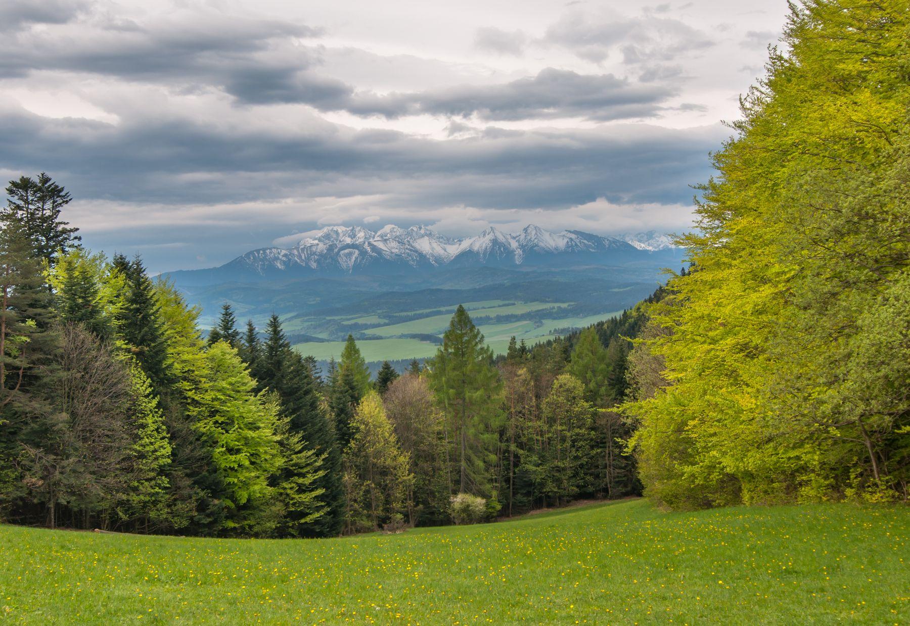 Весна! Весна! Ну наконец-то! Poland Polska góry mountains