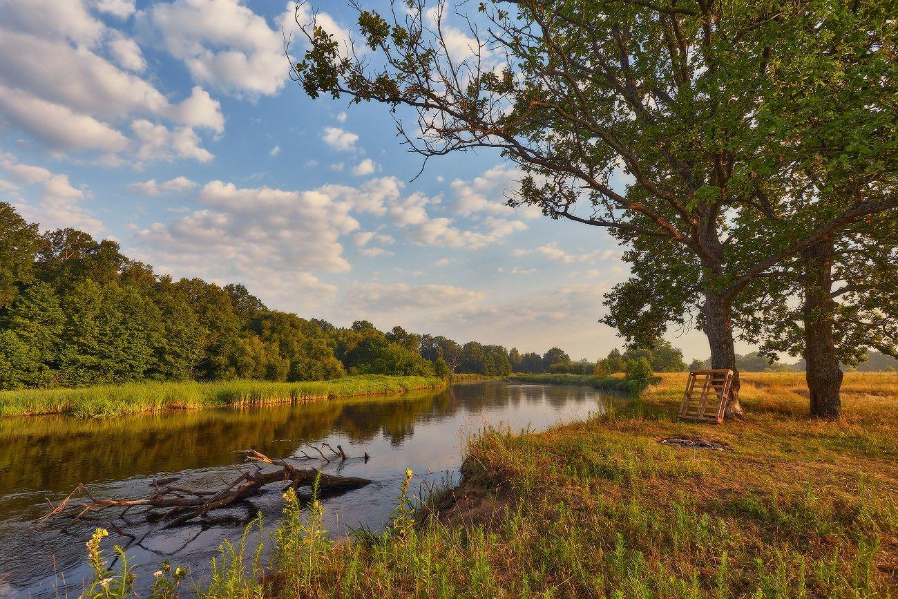 Летнее утро на реке Беларусь Дубрава Июль Лето Луга Рассвет Река Свислочь Утро