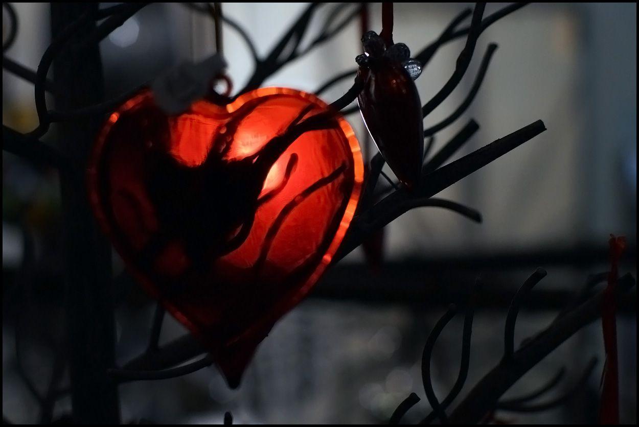 ***Be my valentine...