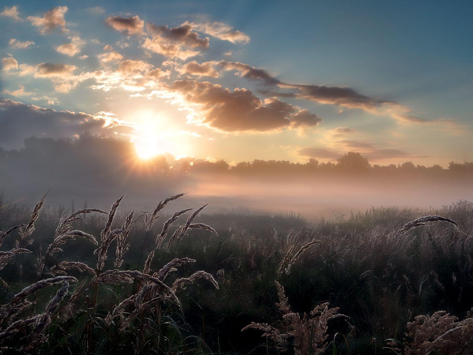 Сияние рассвета... природа рассвет туман свет солнце