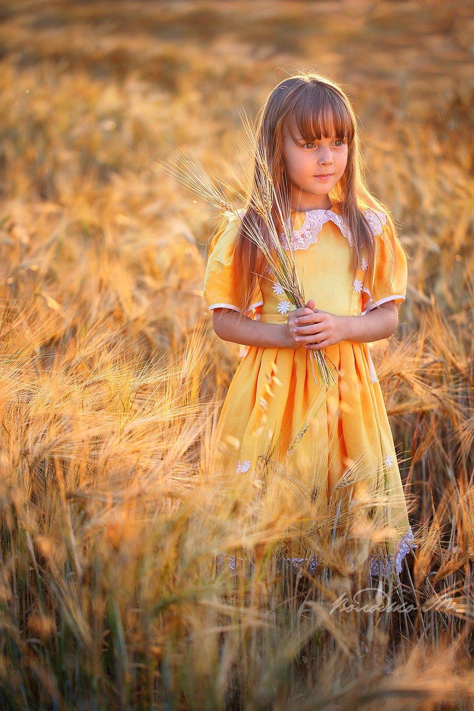 В золоте заката девочка закат пшеница