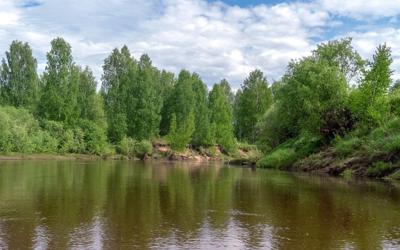река Нея нея река весна природа пейзаж вид вода кострома отдых путешествие сплав тотомица