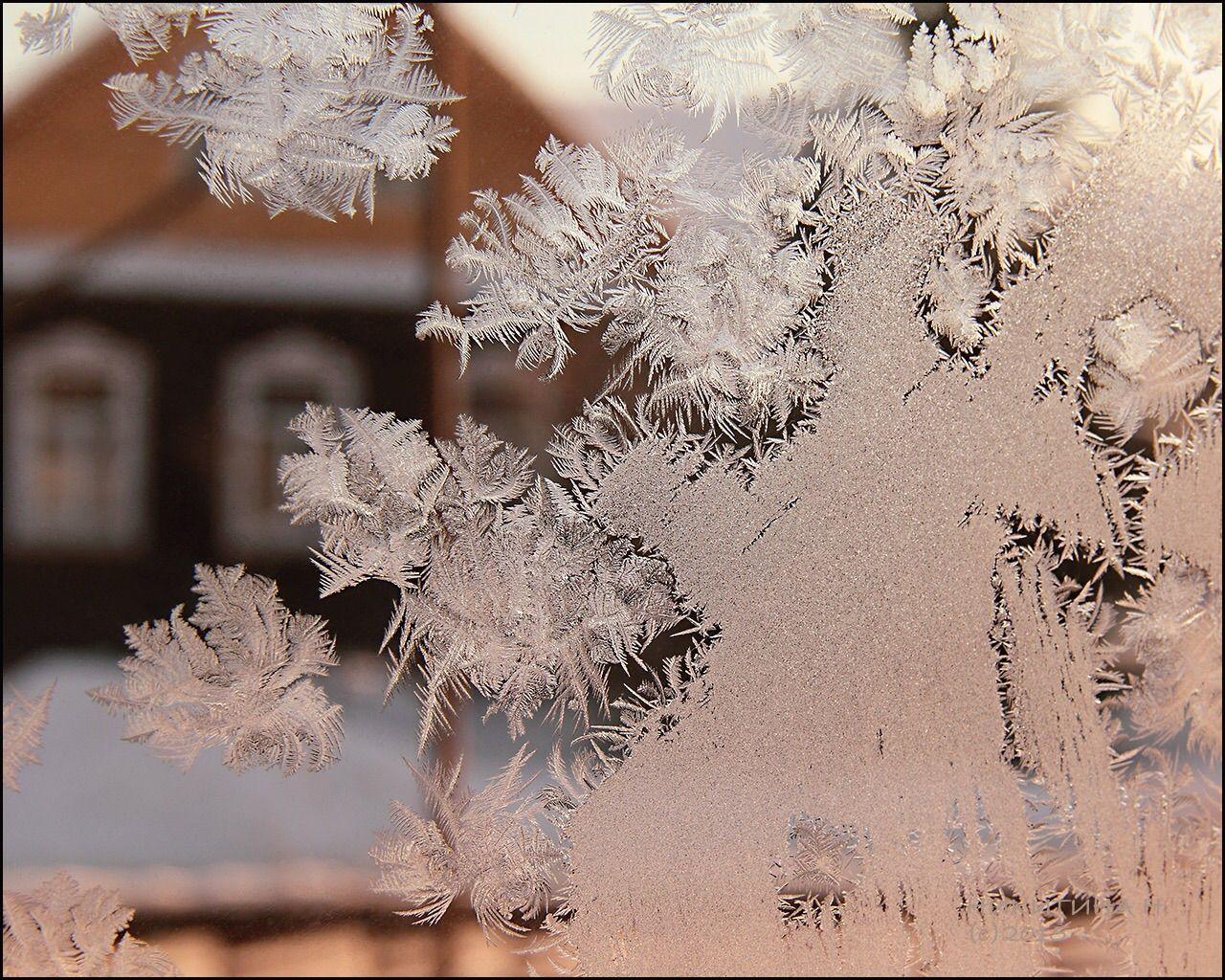 Рисует мороз иней узоры окно зима