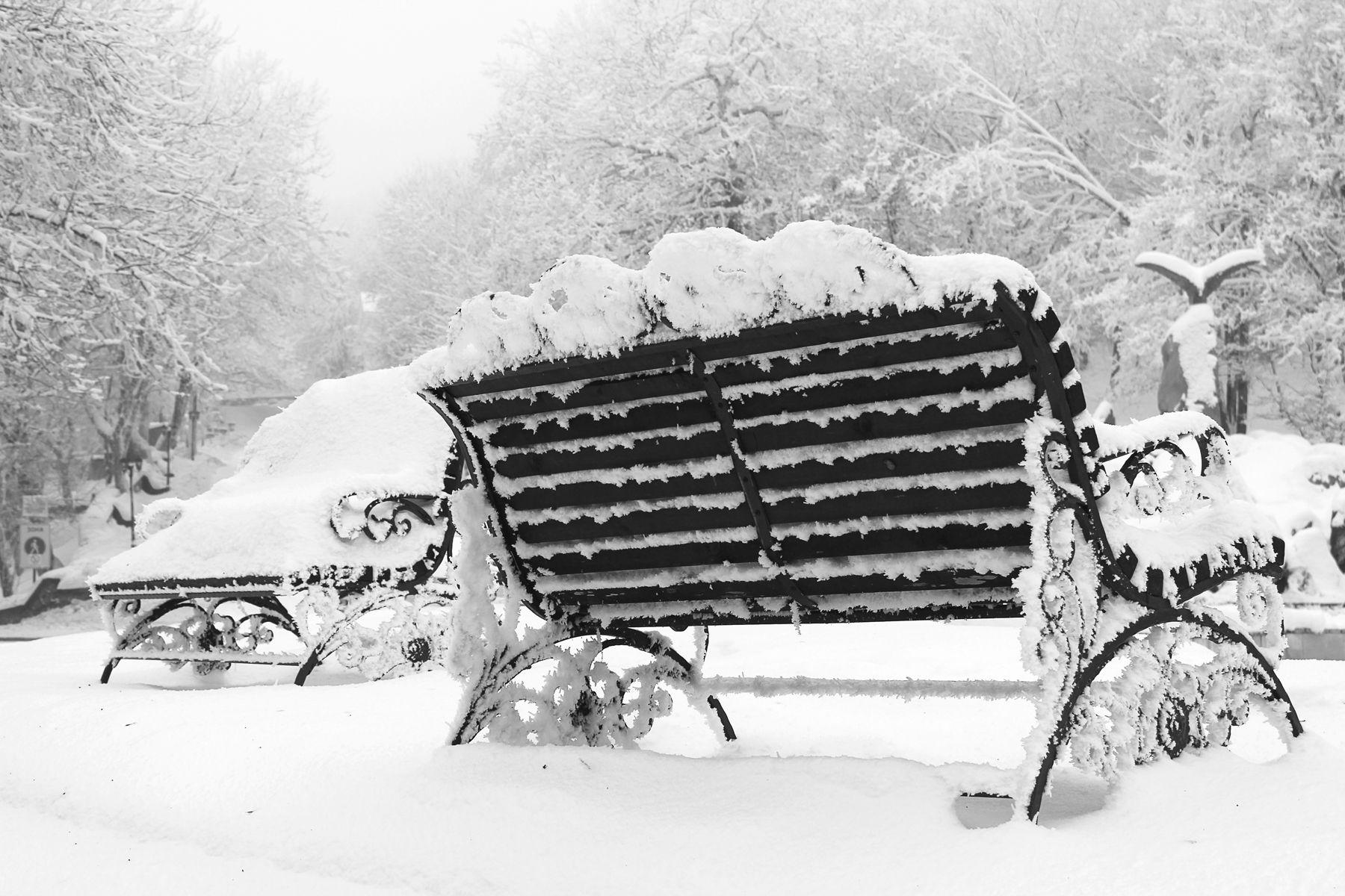 В старом парке зима