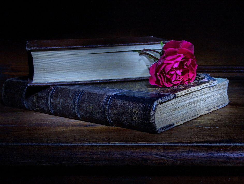 Стихи, луна и роза..