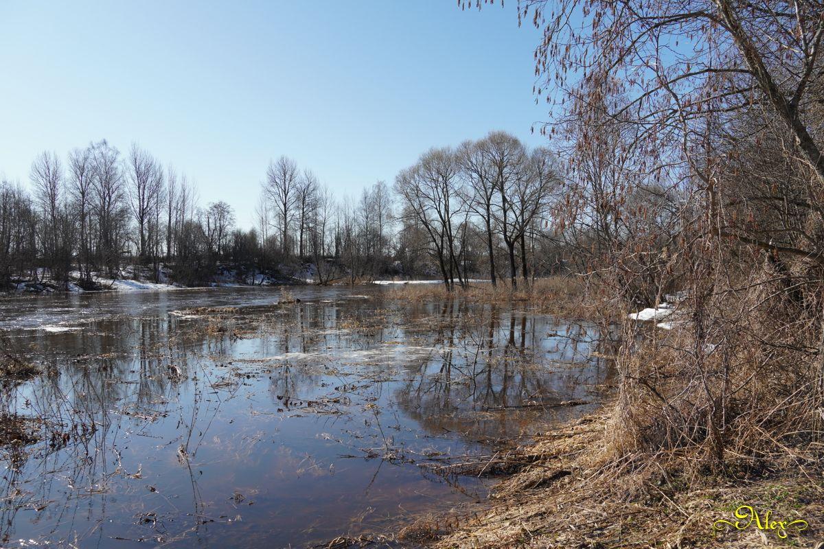 Половодье половодье пейзаж река весна природа