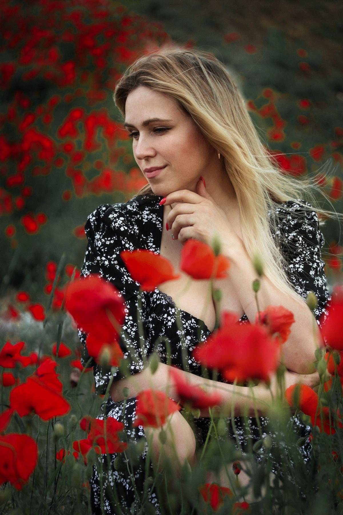 Девушка в маках Маки полевые цветы девушка в цветах маках женский портрет лето лесная поляна