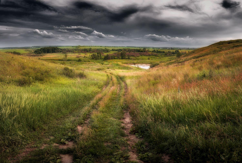 *** Поле небо природа пейзаж солнце фотография Россия дорога холмы