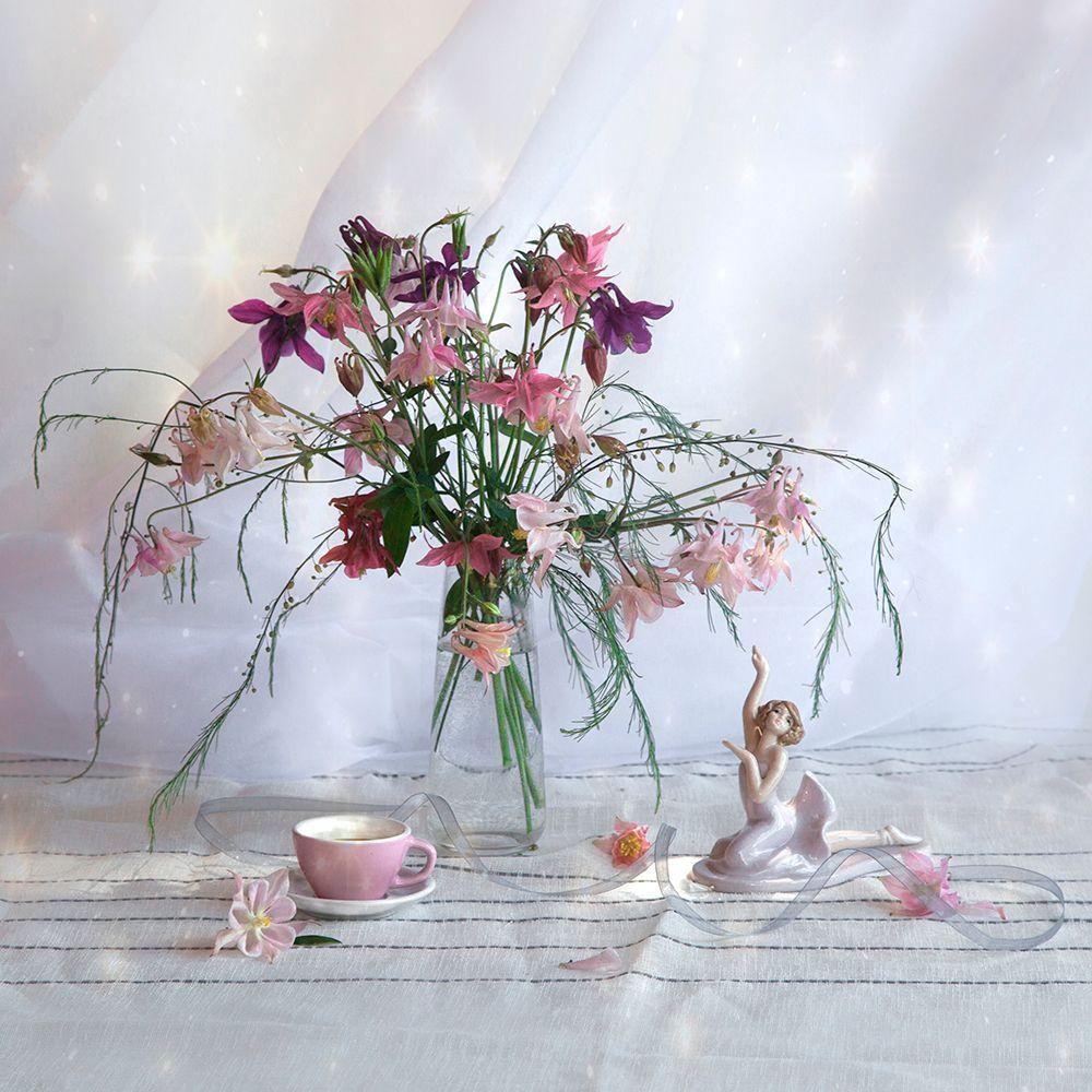 Аквилегия, водосбор или цветы эльфов