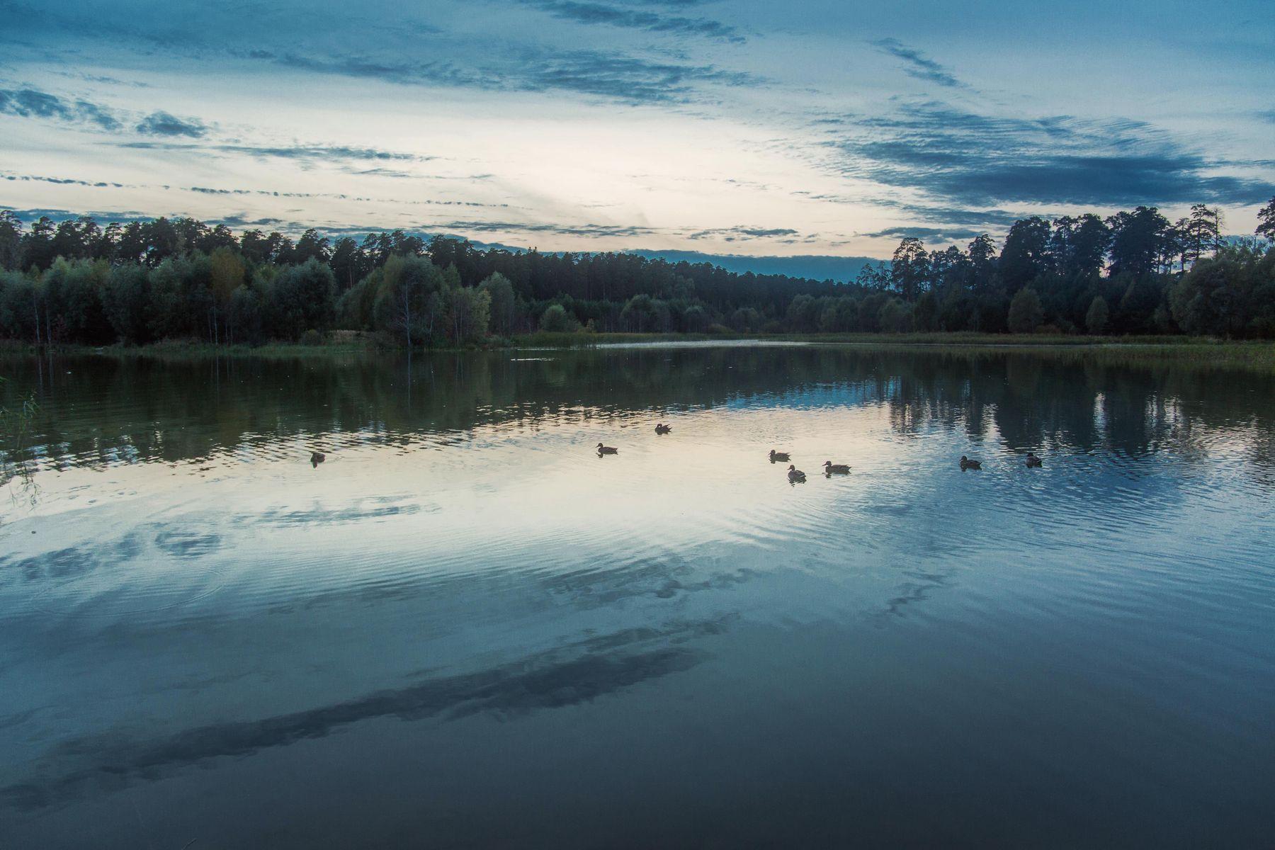 Сумерки на озере природа пейзаж вечер сумерки татарстан озеро малое лебяжье