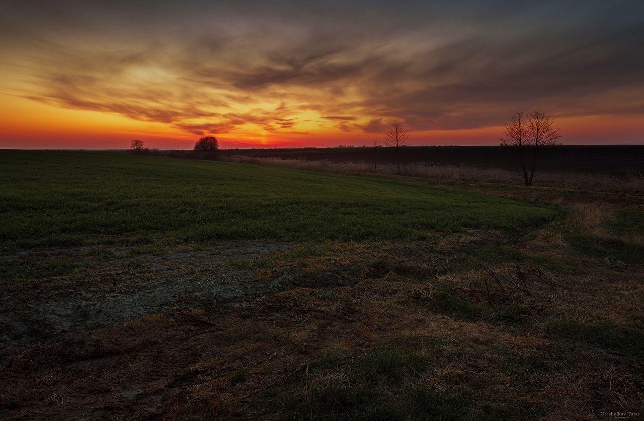 *** пейзаж.природа поле закат небо солнце рассвет украина