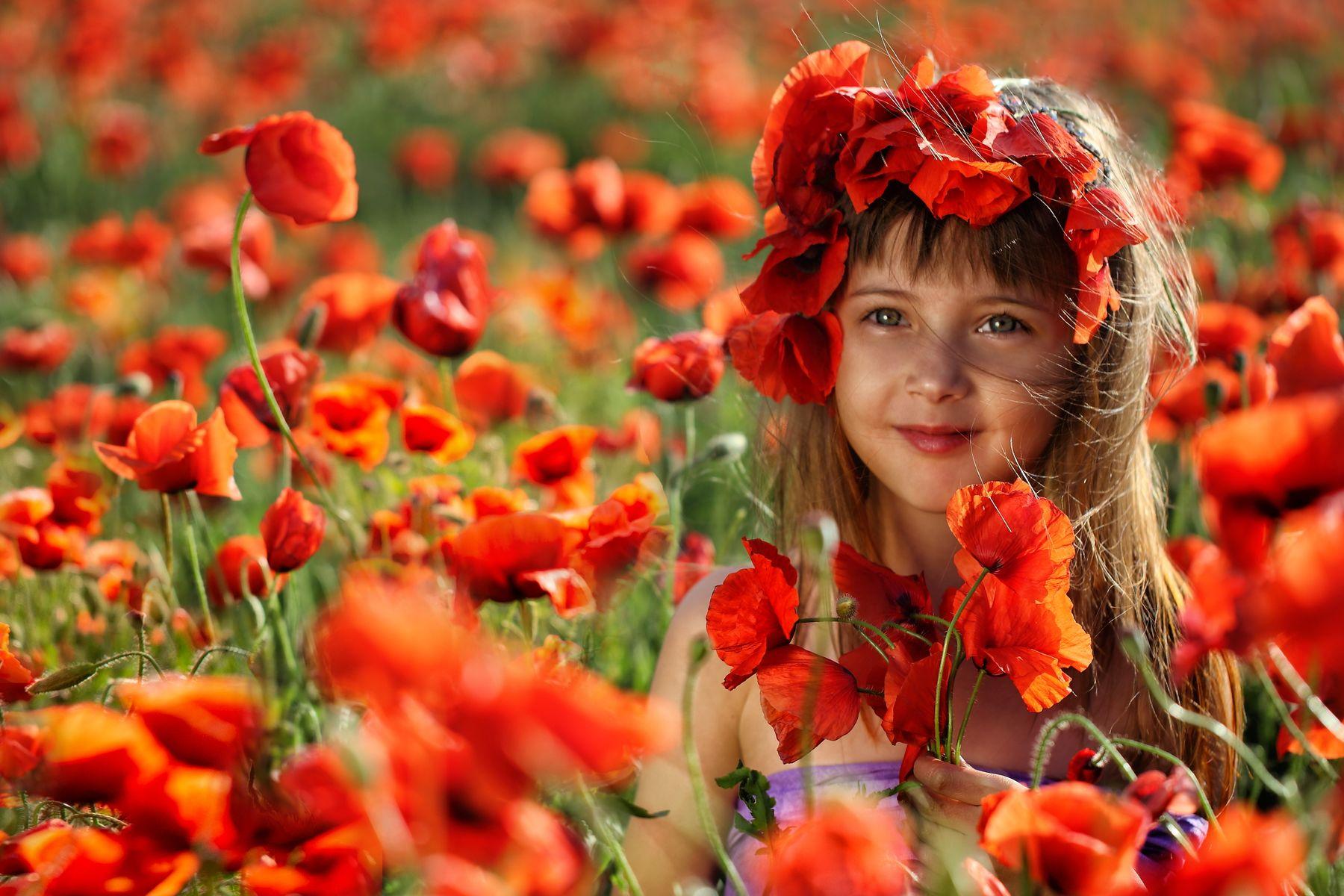 Маковки маки девочка поле цветы