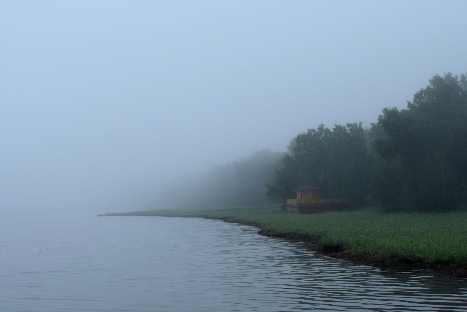Туманное утро. летний пейзаж туман озеро