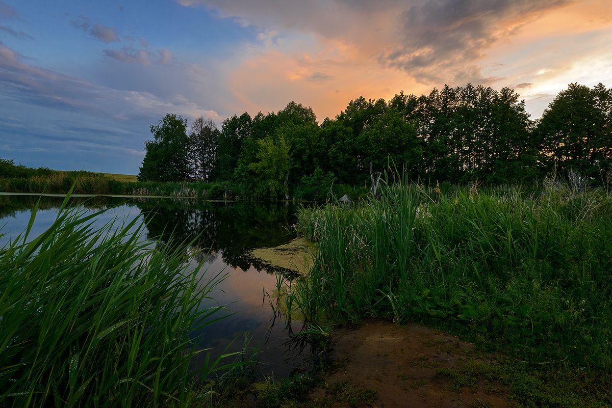 Закат... Лето пруд закат