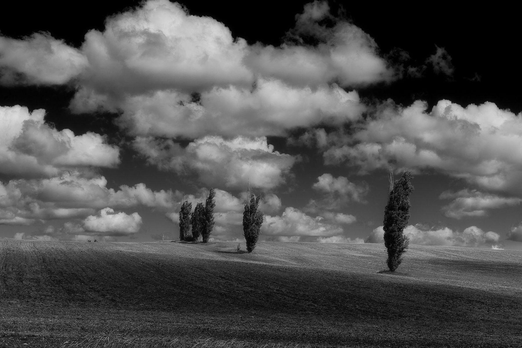 Под ватой облаков