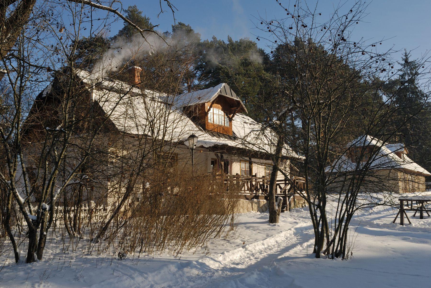 Усадьба Поленово. Флигель № 2 (дом управляющего) Россия Тульская область Поленово усадьба зима