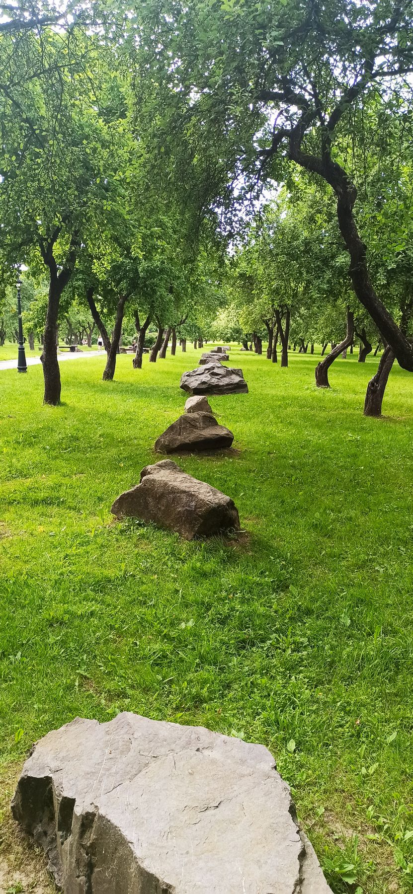 Время собирать камни парк природа деревья сад камни