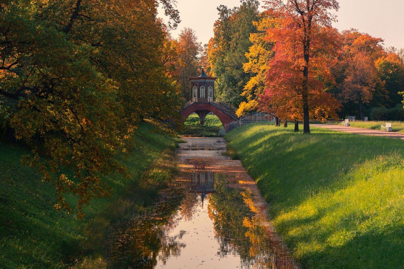 Осень в Царском Селе петербург осень царское село пушкин крестовый мост александровский парк