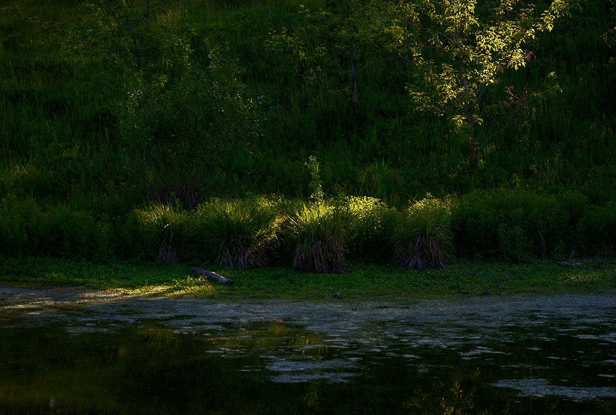 Последний луч... Лето озеро вечер