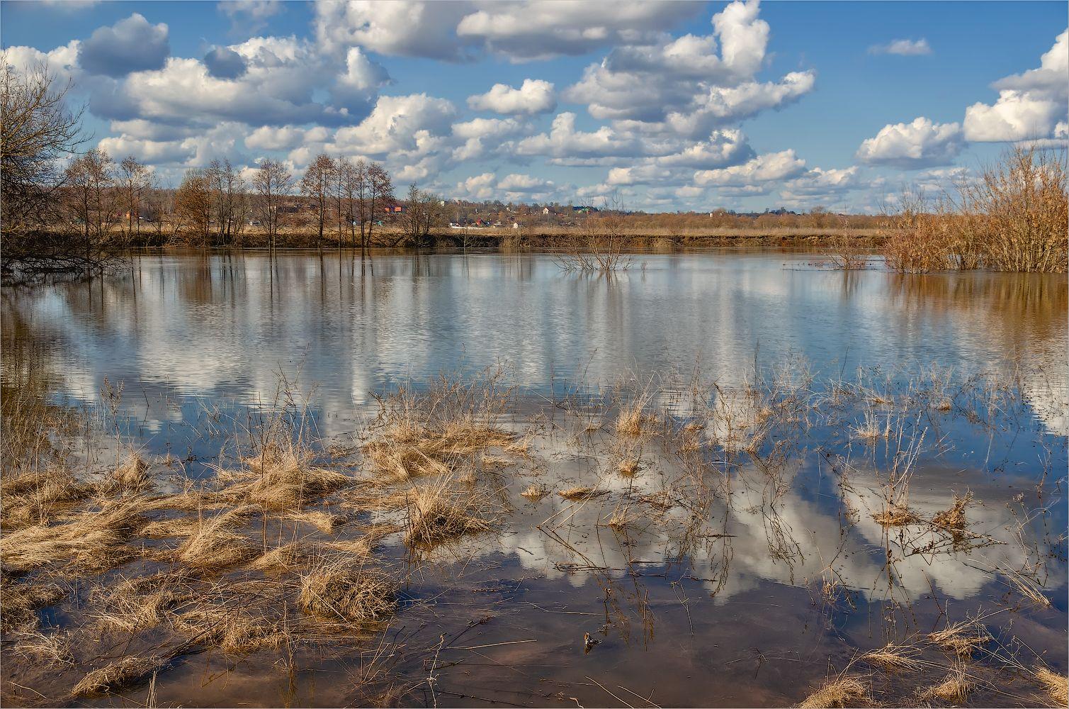 Разлив реки Жиздры пейзаж весна разлив река Жиздра