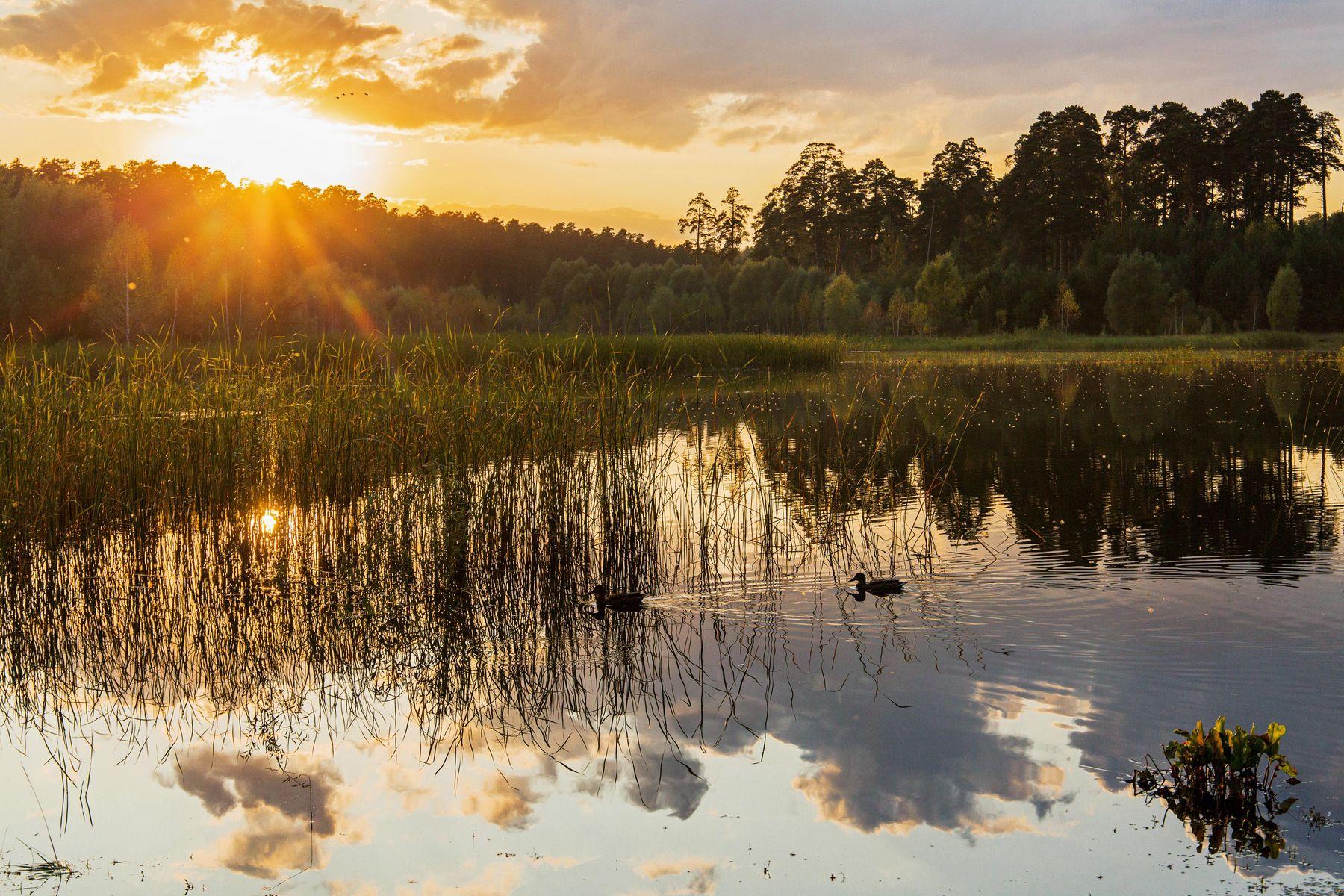 Вечер на озере природа пейзаж вечер закат татарстан озеро малое лебяжье
