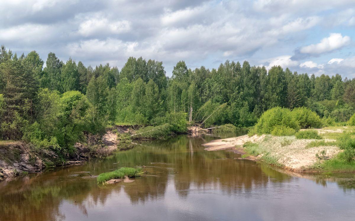 река Нельша нельша река вода лето природа пейзаж нея кострома вид