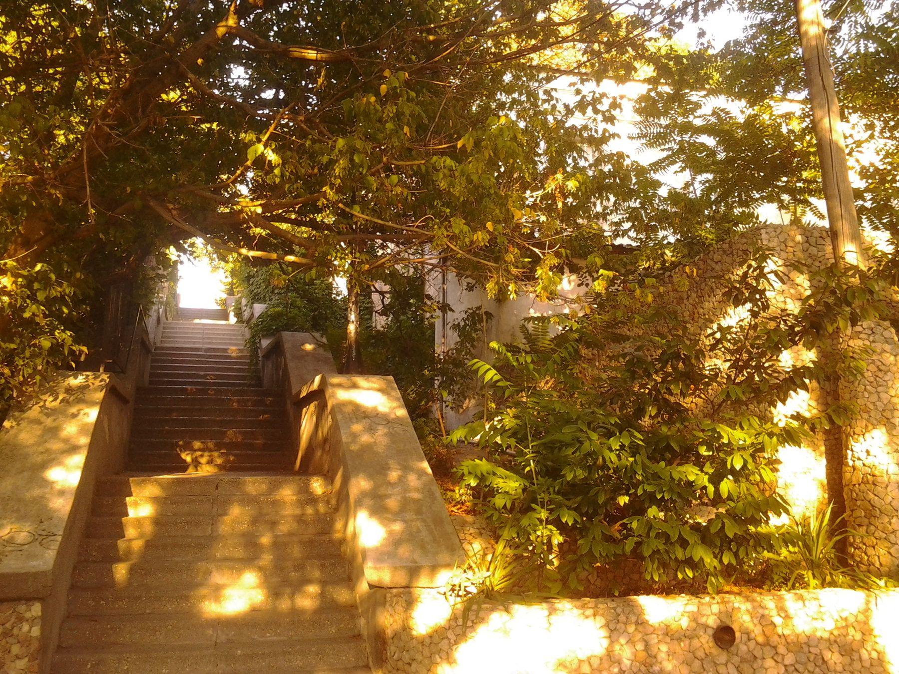 *** лестница солнце