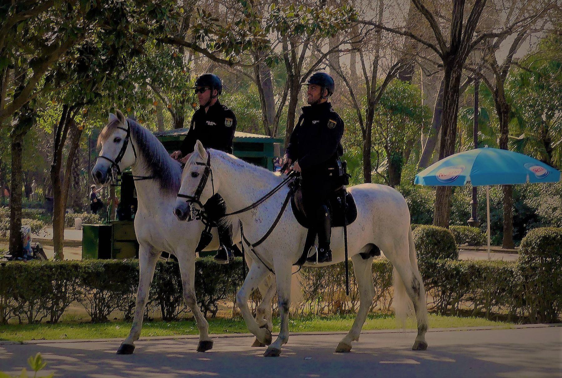 Надёжная охрана Парк конная полиция