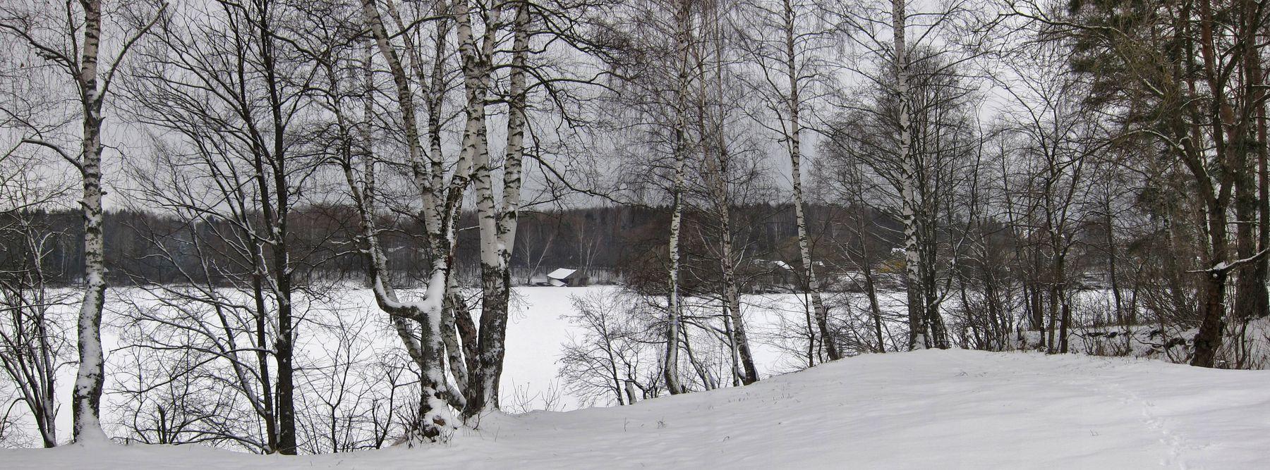 Зима в Тишково. Зима