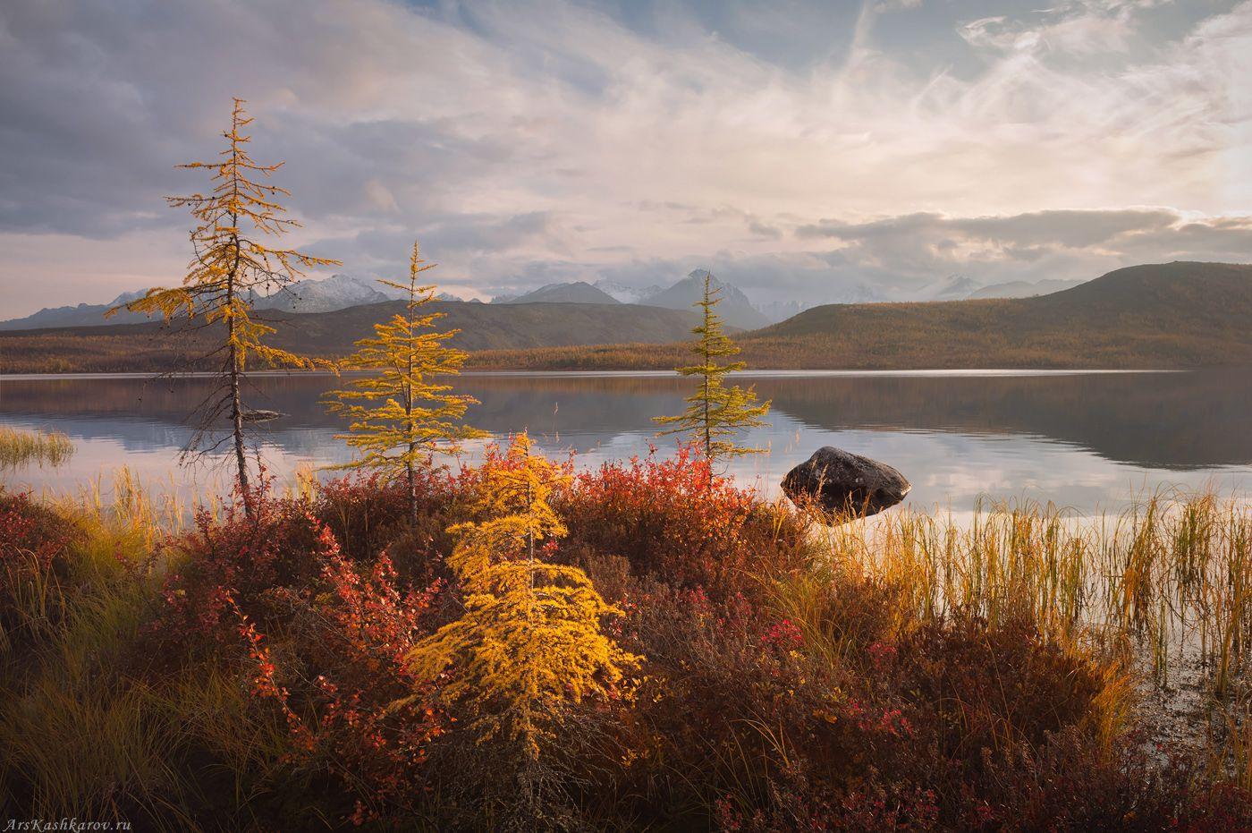 """""""Северная клумба"""" Колыма озеро Джека Лондона Дальний Восток Магаданская область краски осени"""