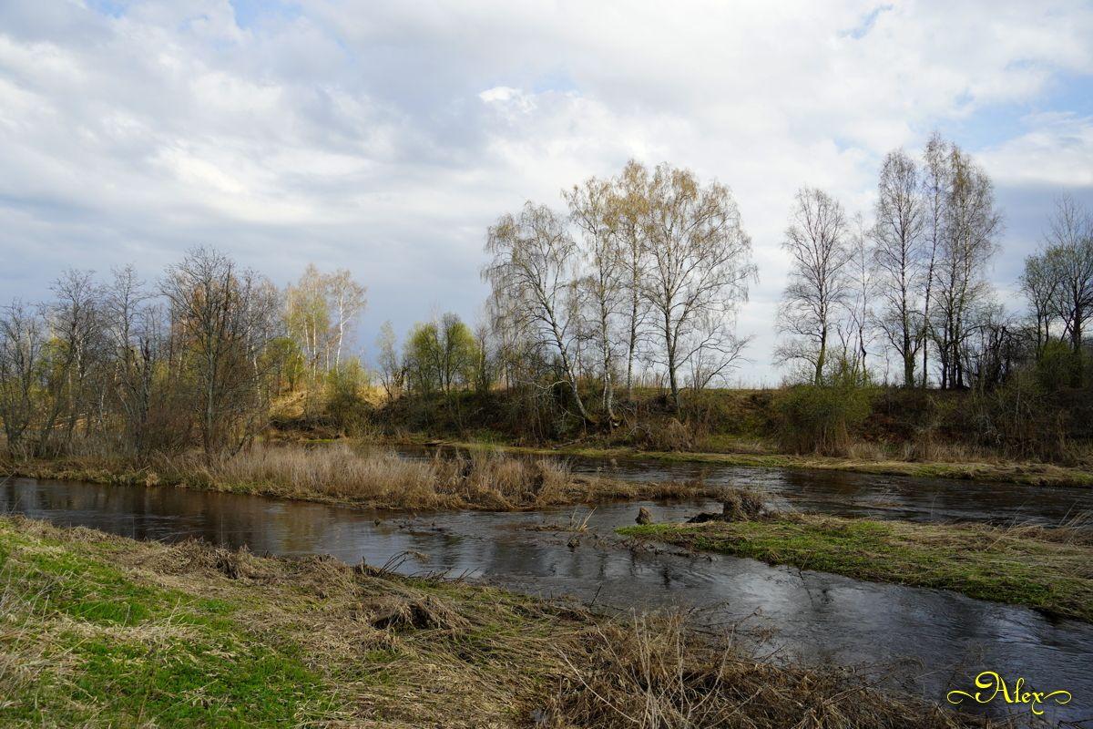 *** река природа пейзаж весна