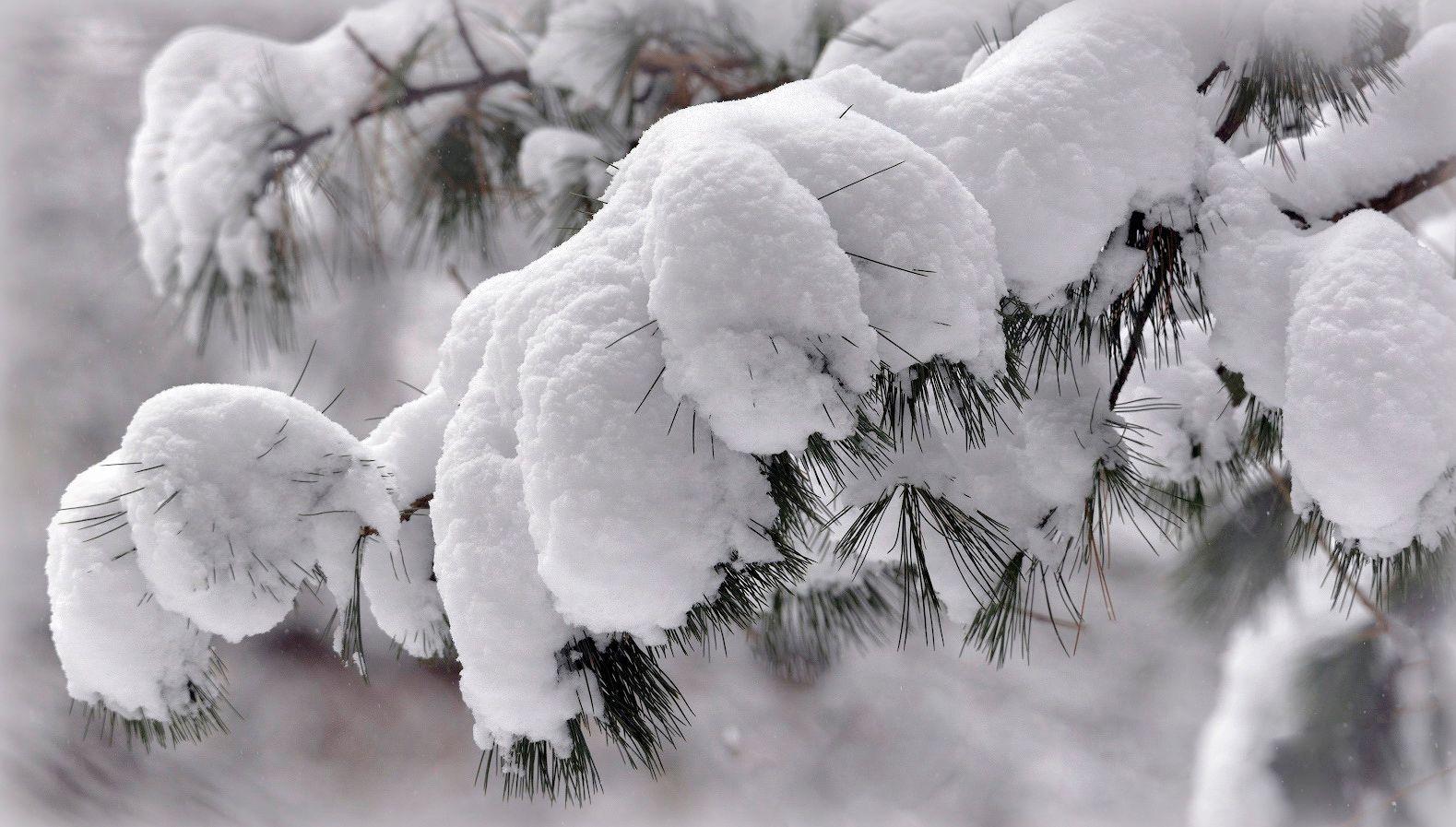 Ещё раз о зиме