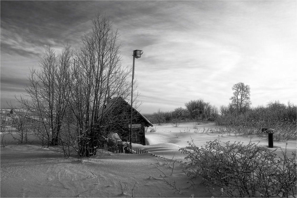 Чёрно-белая зима