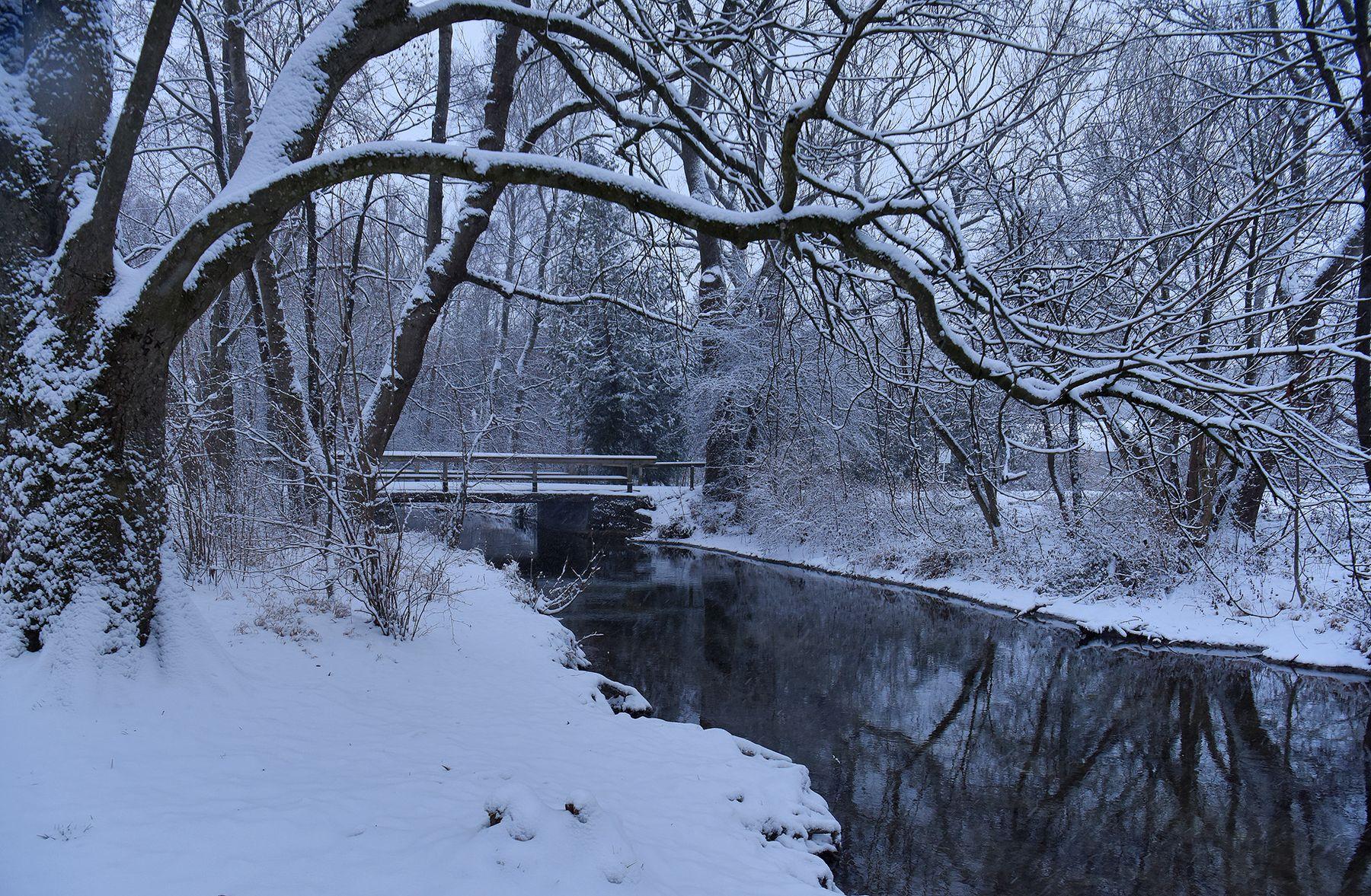 Рано...Тихо... утро ручей мостик