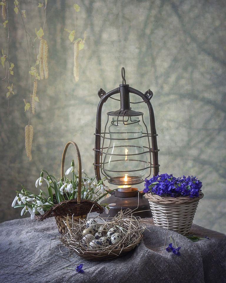 ***Пробуждение натюрморт весна первоцветы весенний фон фонарь фиалки подснежники перепелиные яйца
