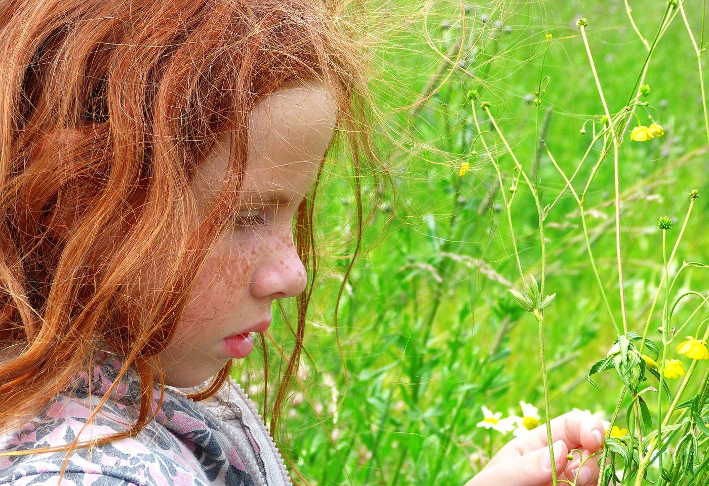 Цвет лета лето трава