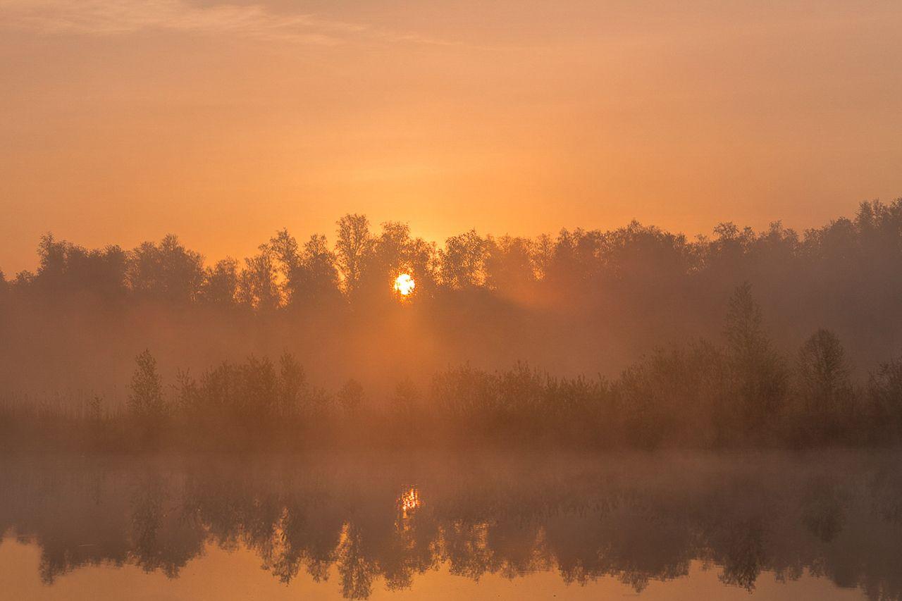 На рассвете майским утром.