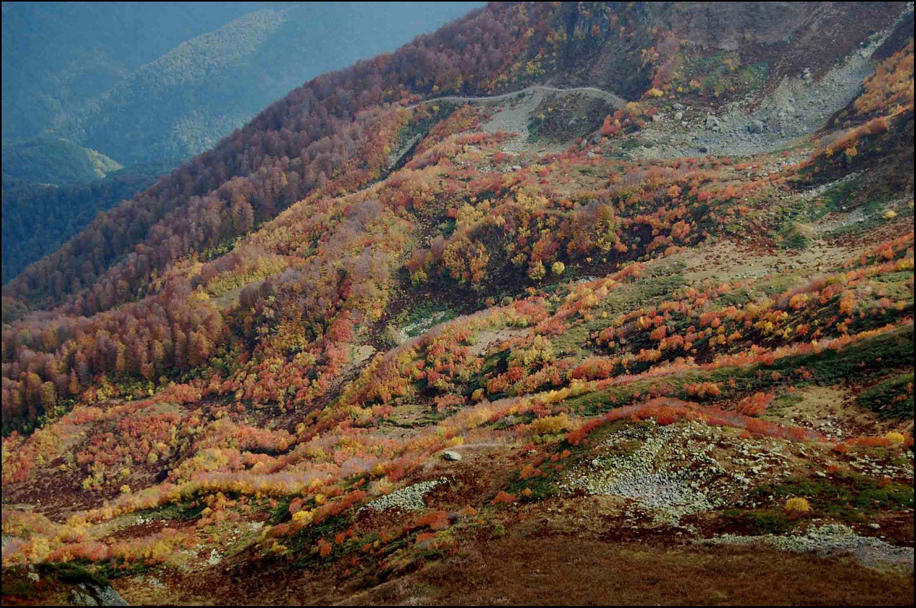 ***Осень в горах