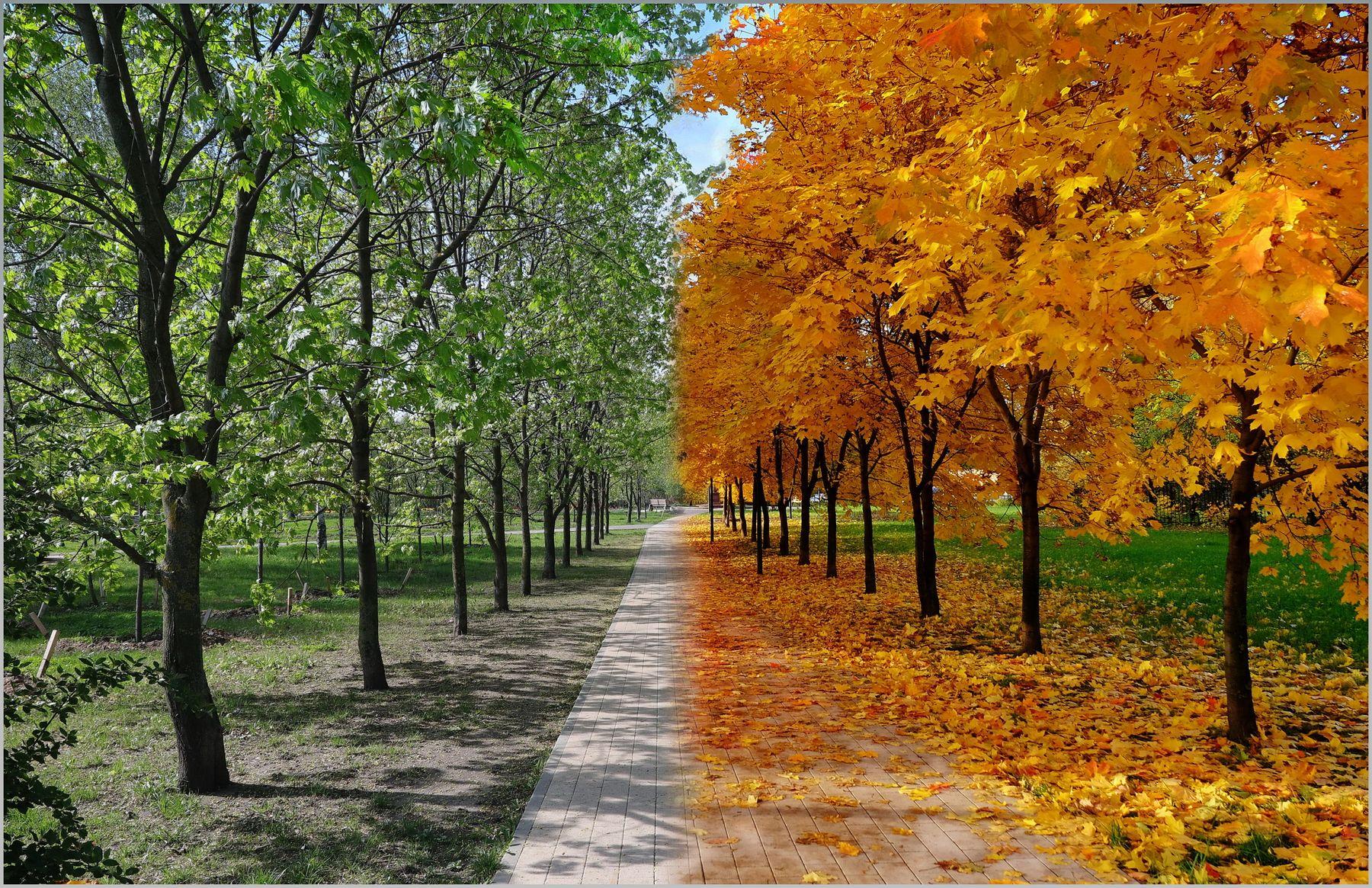 весна и осень весна осень времена года монтаж компьютерная графика