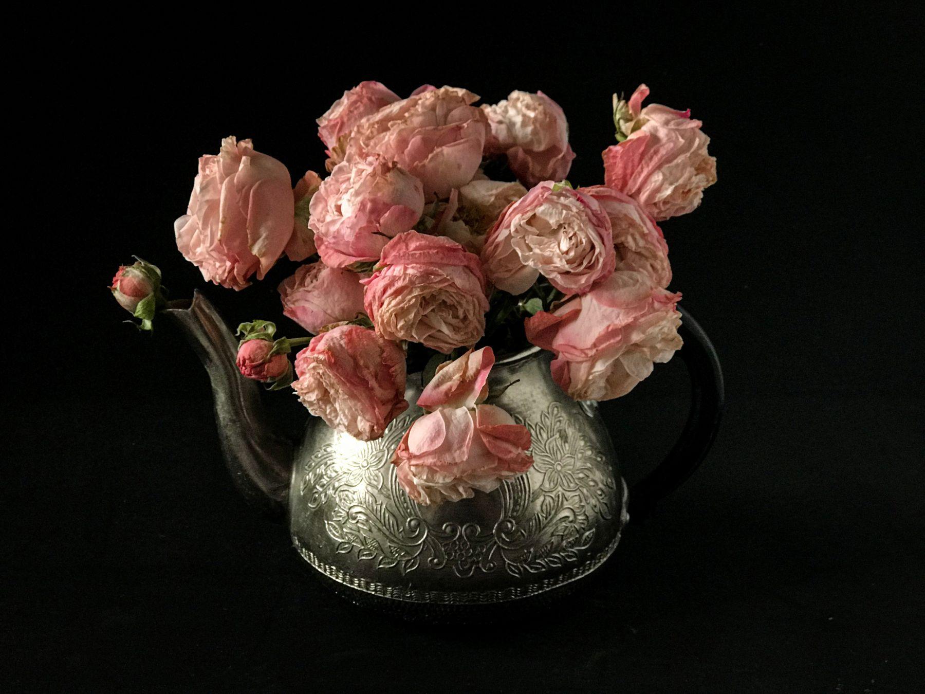 Чайные розы Цветы розы низкий ключ натюрморт