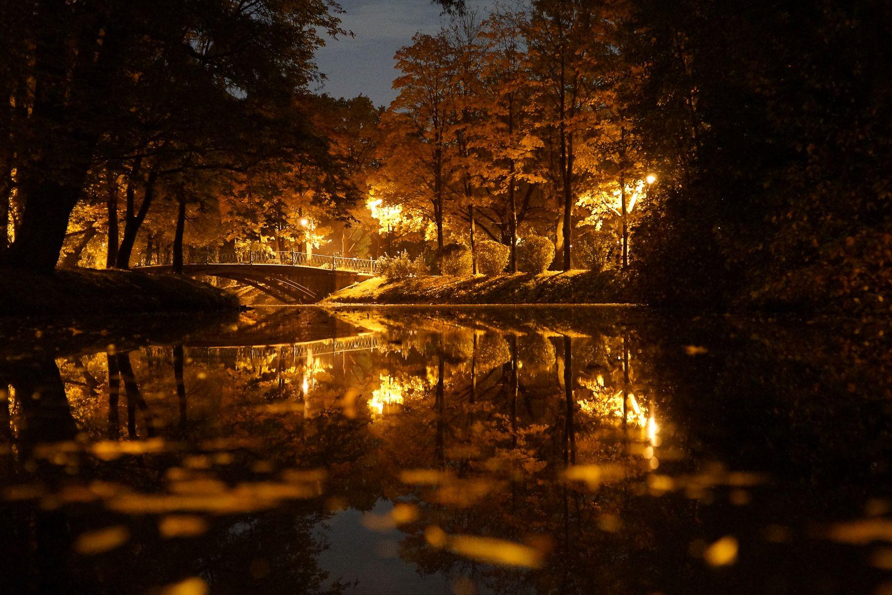 Я ждал, и она пришла осень санкт-петербург пар победы московский парк пруд осенний пейзаж желтые листья