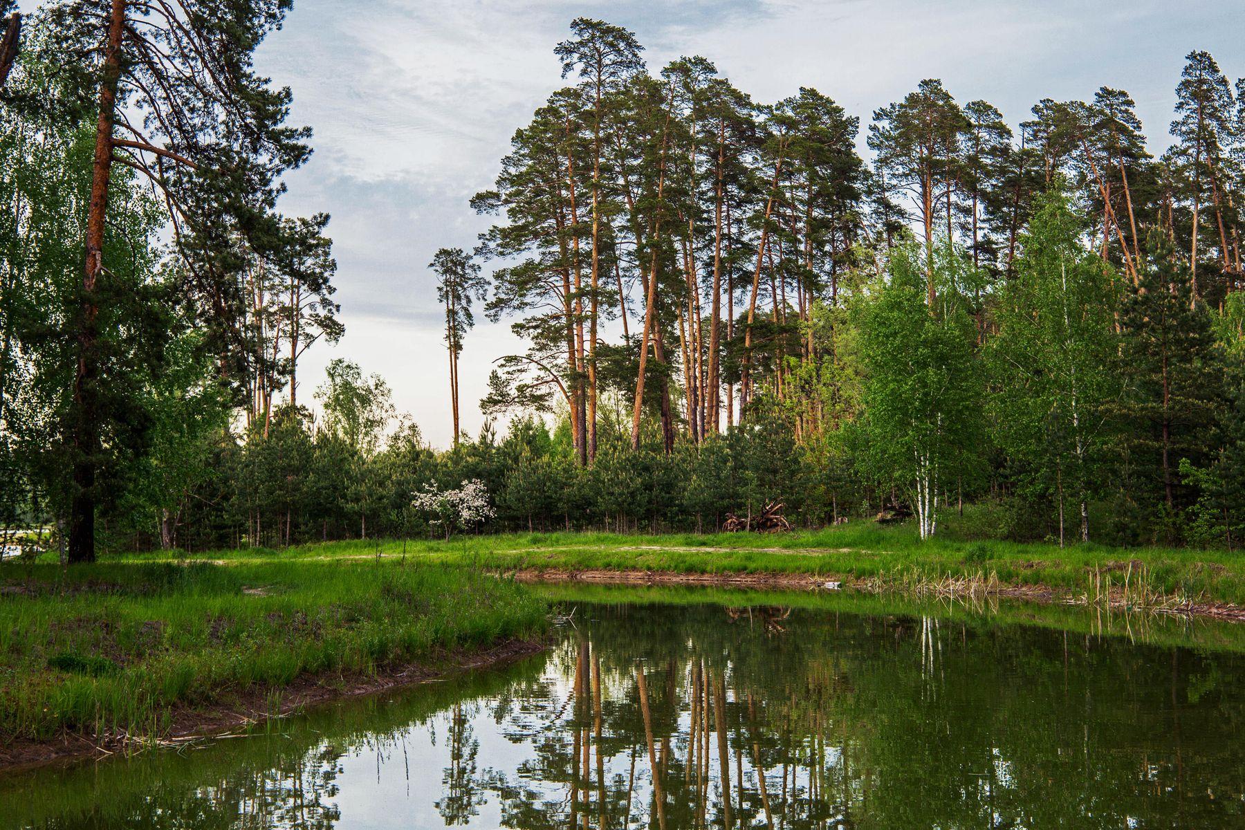 *** природа пейзаж весна татарстан протока лебяжьи озера