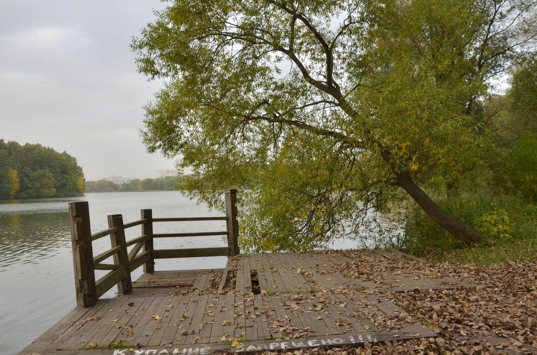 ***Осень......купание запрещено......